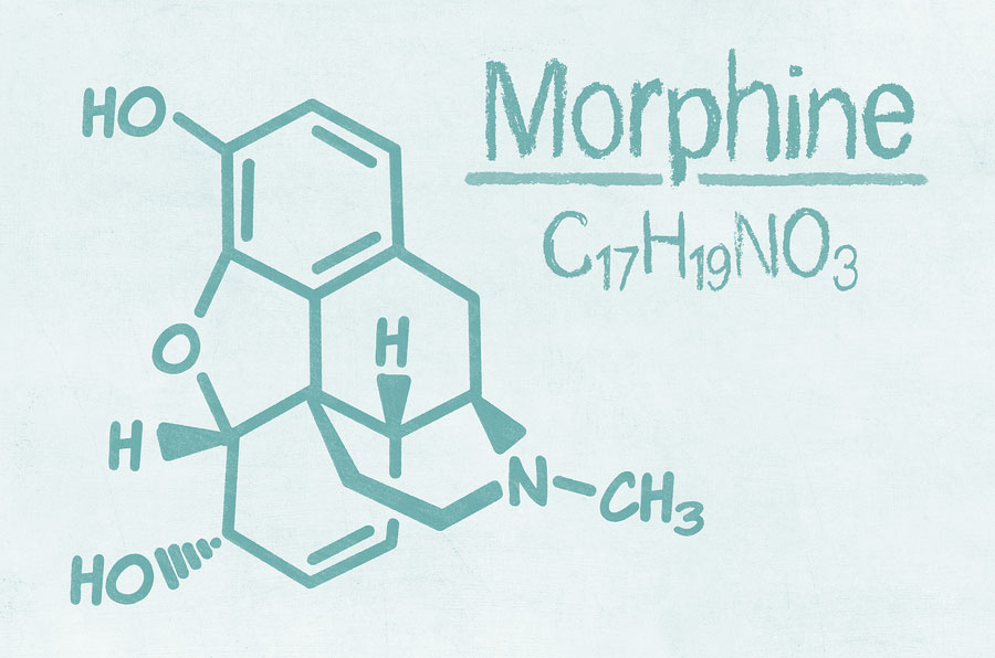 токсическое действие морфина